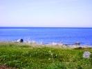 Природа родной страны (РОССИЯ) :: Берег Белого моря