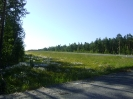По дороге в Ханты-мансийск