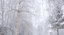 Урайская зима