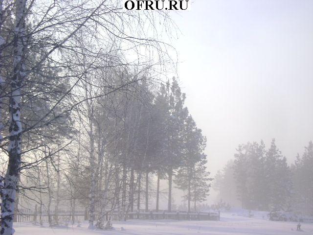 зимнее морозное утро
